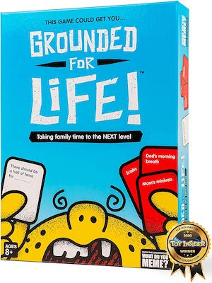 grounded for life game box